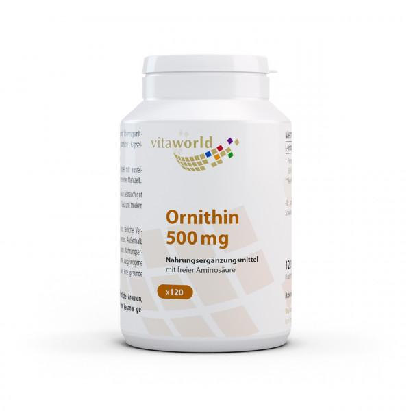 Ornithin 500 mg (120 Kps)
